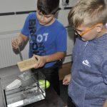 Zkouška nanonátěru na dřevě